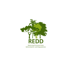 Reducing Emissions from Deforestation and Forest Degradation Program (REDD) - GIZ